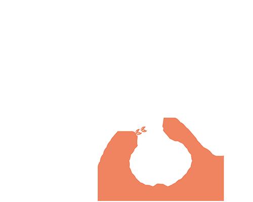 NXT GP